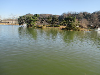 281231秋川湖3.JPG