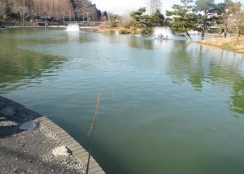 290122秋川湖1.JPG