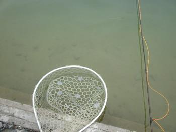 290218秋川湖2.JPG
