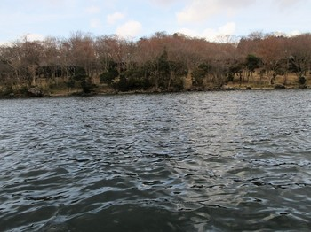 290312芦ノ湖10.JPG