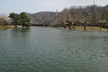 290319秋川湖 (4).JPG