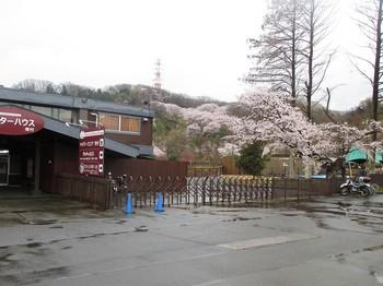 290409秋川湖 (2).JPG