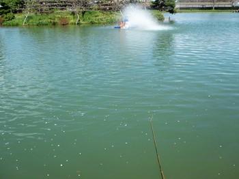 290419秋川湖 (5).JPG