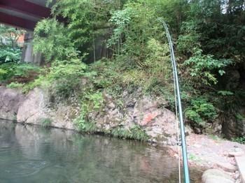 290716養沢 (19).JPG