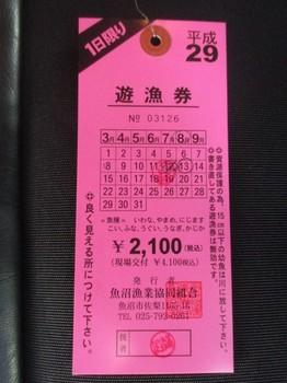 29081213夏休み (65).JPG