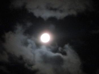 291004中秋の名月 (1).JPG