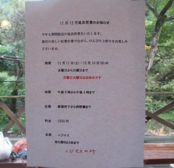 291014養沢 (3).JPG