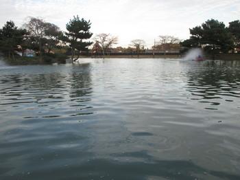 291103秋川湖 (18).JPG