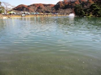 291202秋川湖 (3).JPG