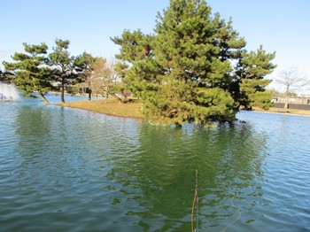 300103秋川湖 (7).JPG