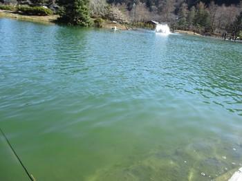 300114秋川湖 (4).JPG