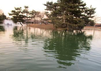 300219秋川湖 (25).JPG