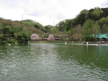 300407秋川湖 (2).JPG