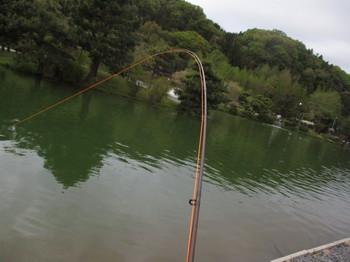 300415秋川湖 (47).JPG