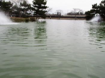 190220秋川湖 (42).JPG