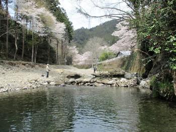 190414養沢 (23).JPG