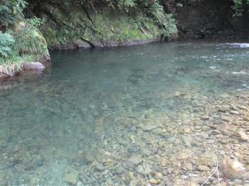 190818養沢 (15).JPG