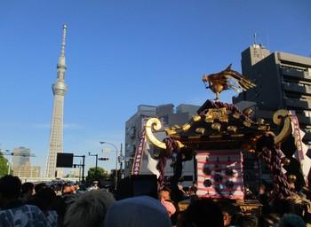 2018三社祭4.JPG
