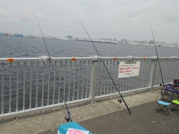 290722第13回親子釣り教室・若洲 (11).JPG