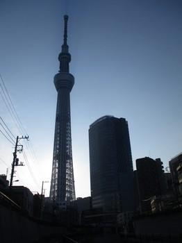 300715北十間川 (2).JPG