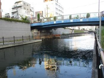 300715北十間川 (3).JPG
