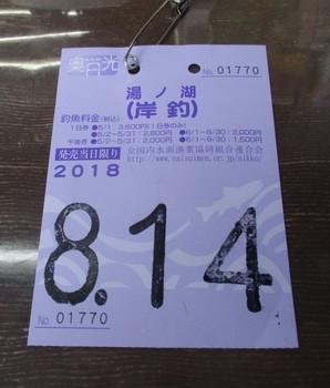 300814夏休み (5).JPG